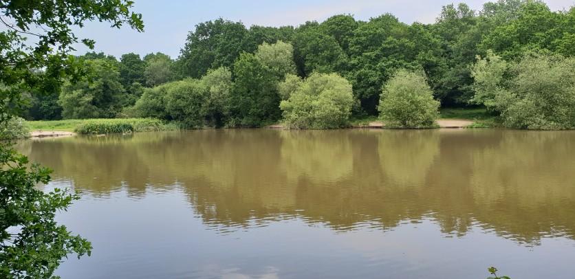Stew Ponds