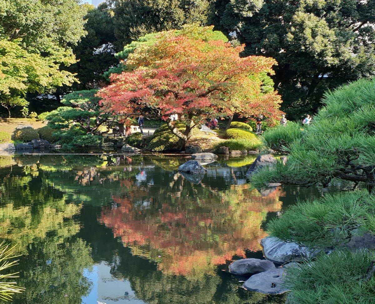 Wandering around Bunkyō