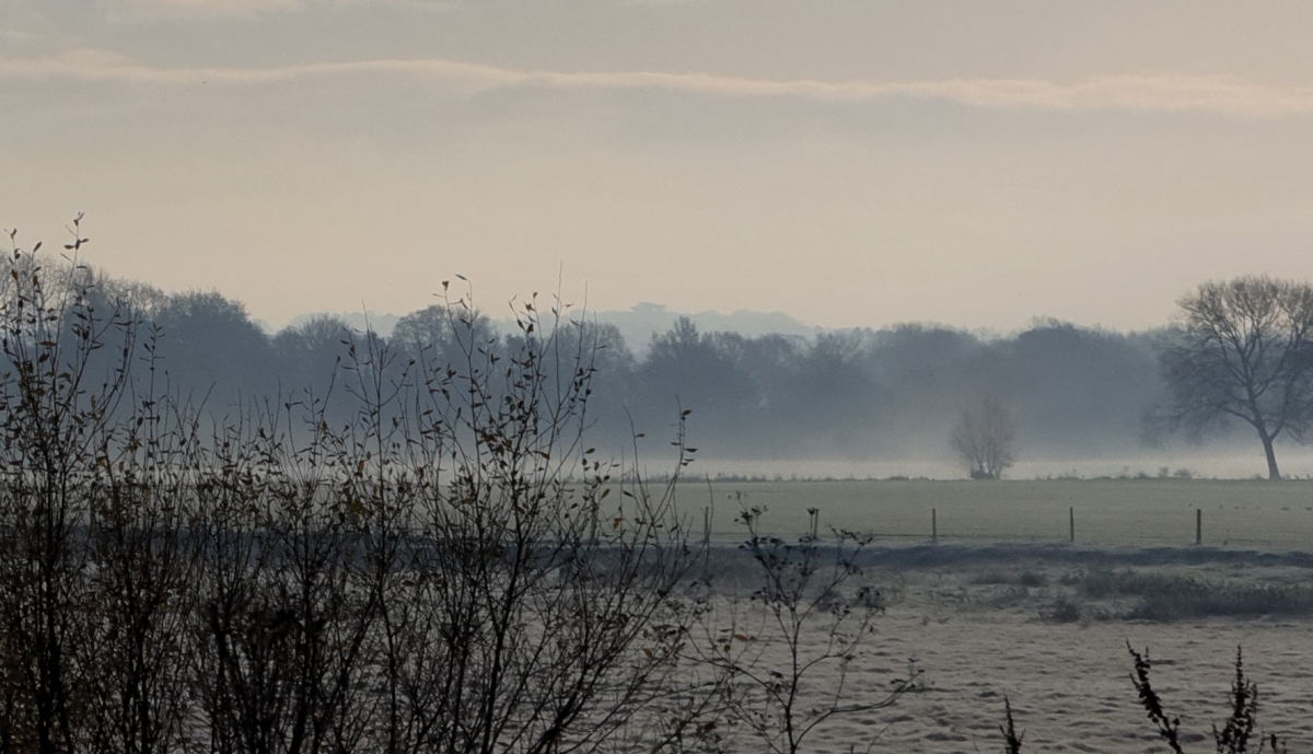 Makers' Market, Mist and MaidMarion
